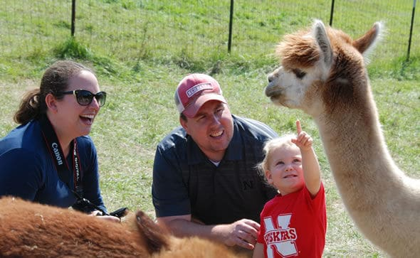 A family enjoys the Alpacas of the Heartland open house.